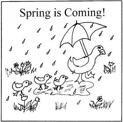 It's Spring? Are we sure …?